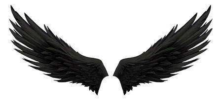 Pin Em Wings