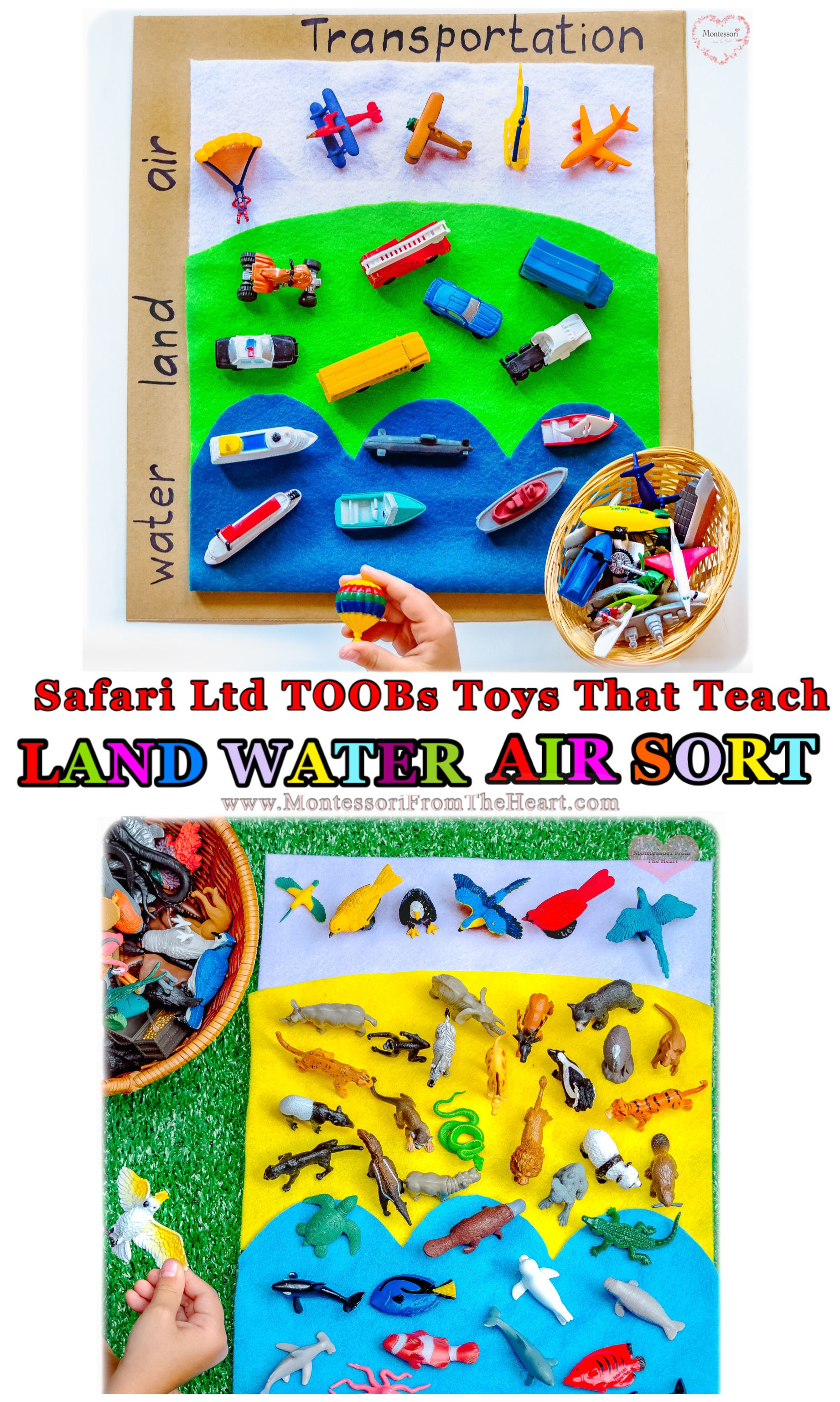Land Water Air Transportation Animals Sort