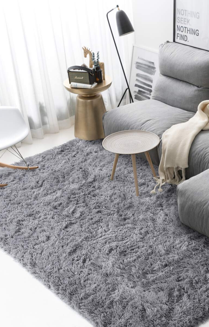 Soft Shaggy Floor Area Rug For Living Room Bestrugprices Com