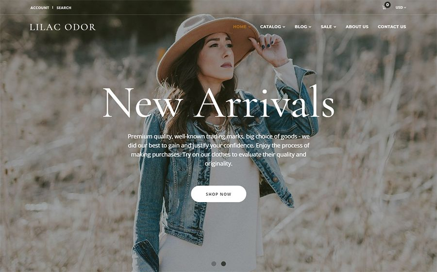 Top 20 Best Shopify Themes | 100+ Bunch of WordPress Themes | Best
