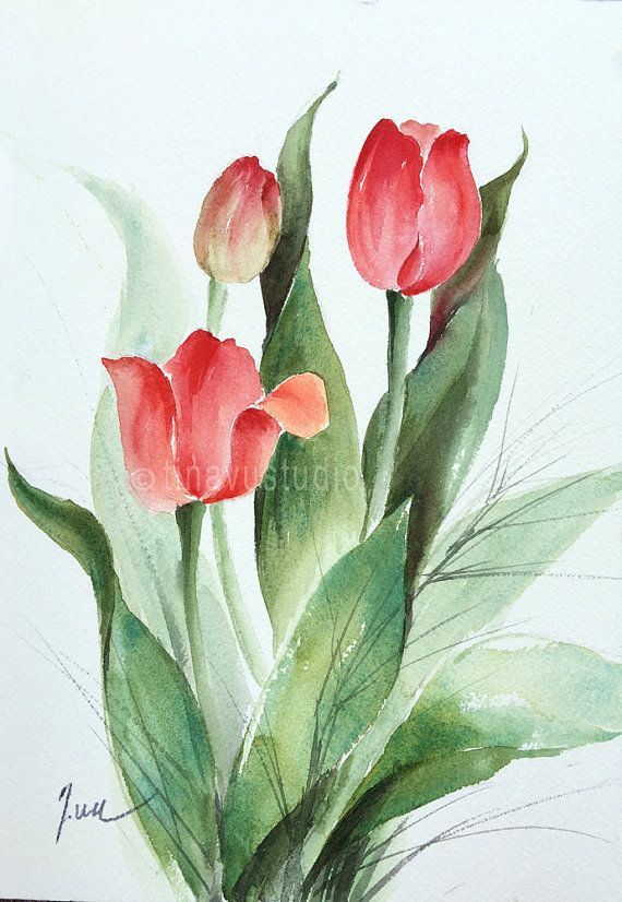 Spring Flower Painting Red Tulip Art Watercolor Tulips Aril