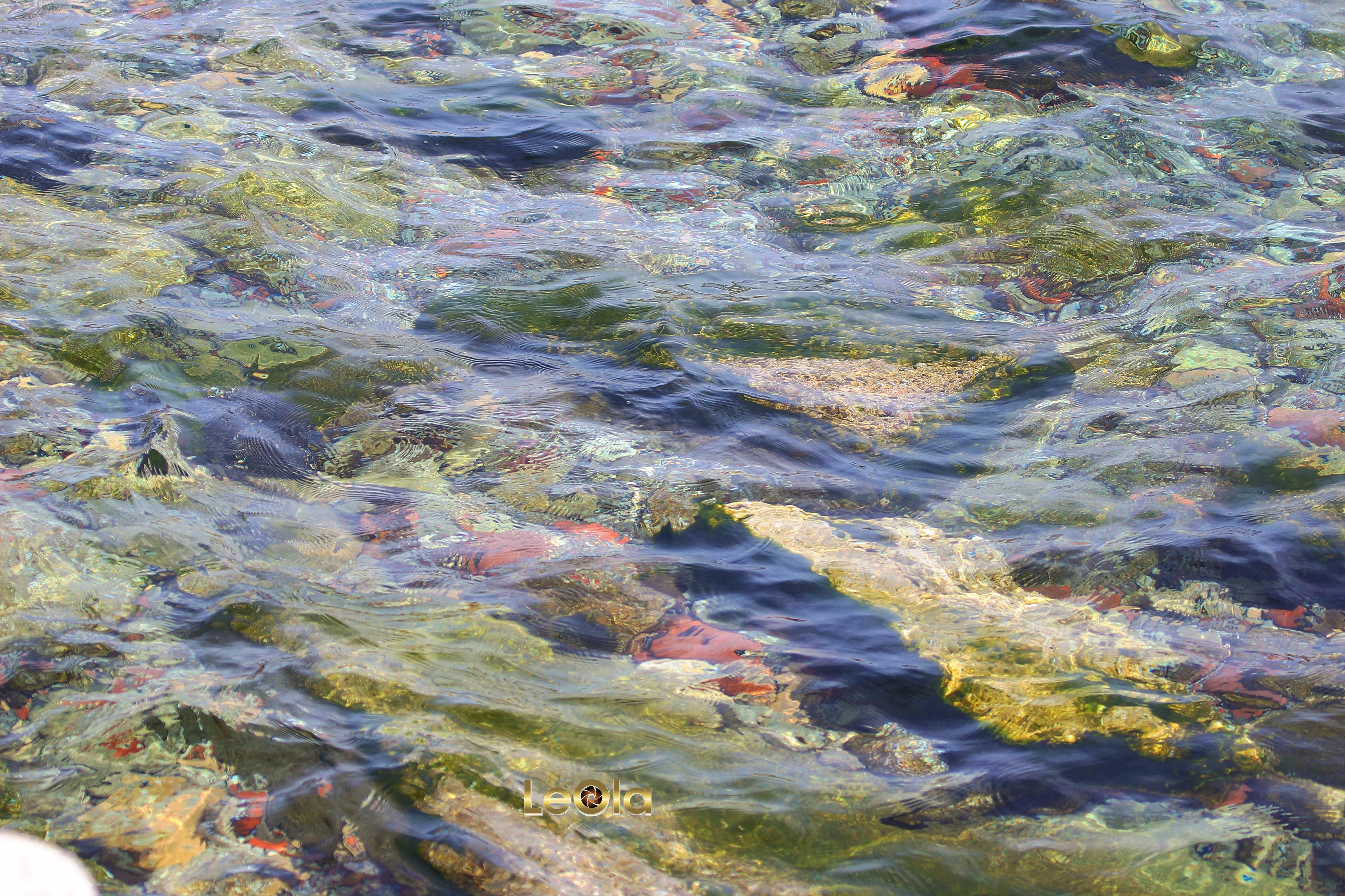 Photo Challenge:Water & River Rocks