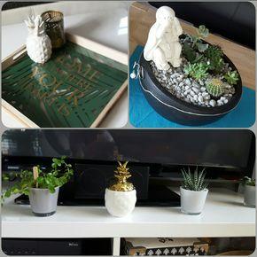 Super Dekoration Von Tedi Und Familie Dazu Noch Die Keinen Kakteen Eine Perfekte Deko Decorative Tray Decor Home Decor
