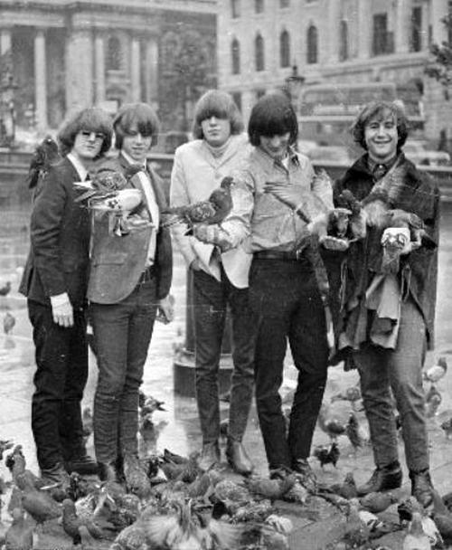 b98e03e2907 The Byrds (with birds!) -- 1965 - L-R Roger McGuinn