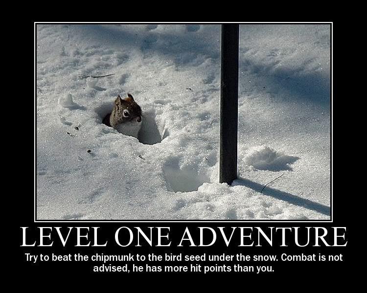 Level One Adventure