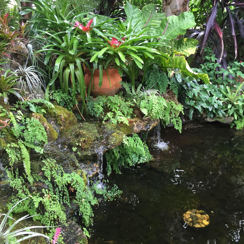 Spanish Garden, Tropical Gardens, Backyard, Waterfalls, Patio, Tuin, Backyards
