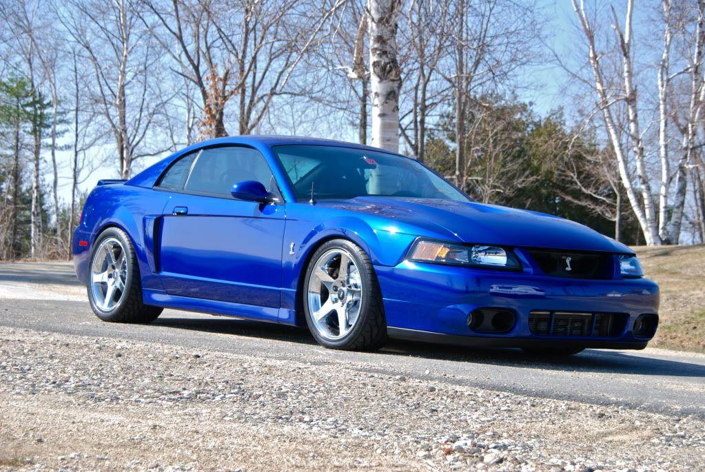 2003 Ford Mustang Svt Cobra Ford Mustang Cobra Mustang Cobra Modern Muscle Cars