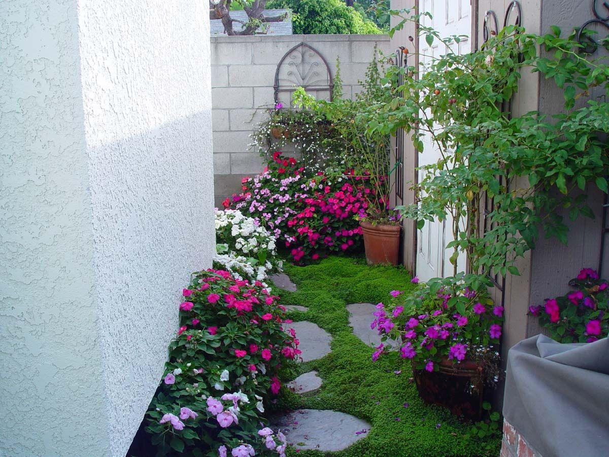 Gorgeous little garden nook. Love the use of Irish moss ...