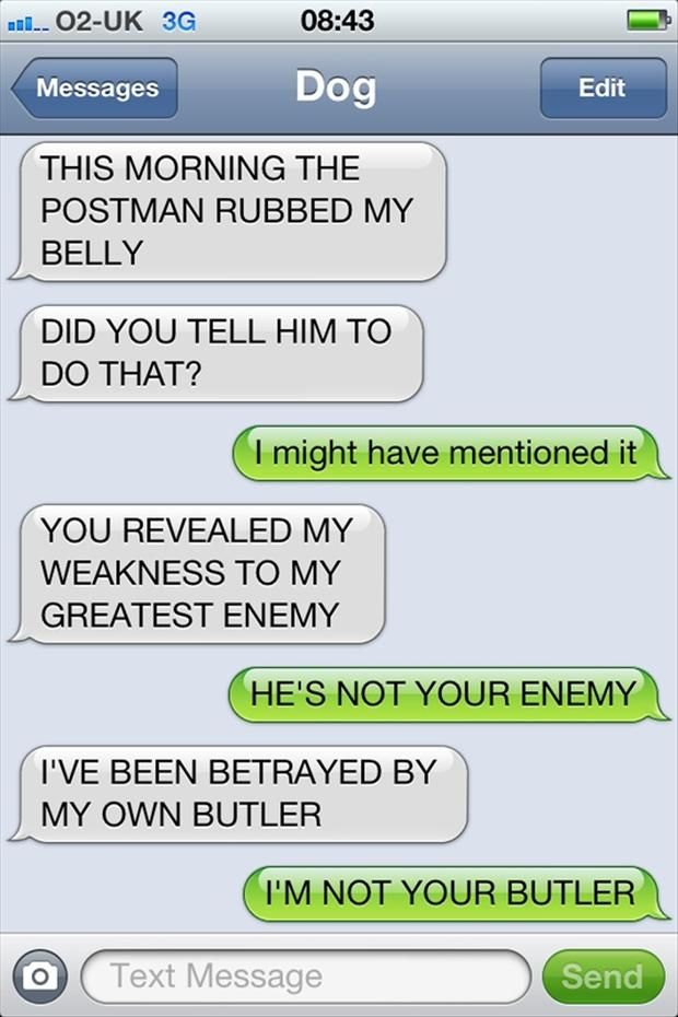 IVE BEEN BETRAYED BY MY OWN BUTLER Texts From Dog Funny - Dogs able text 30 hilarious texts dogs