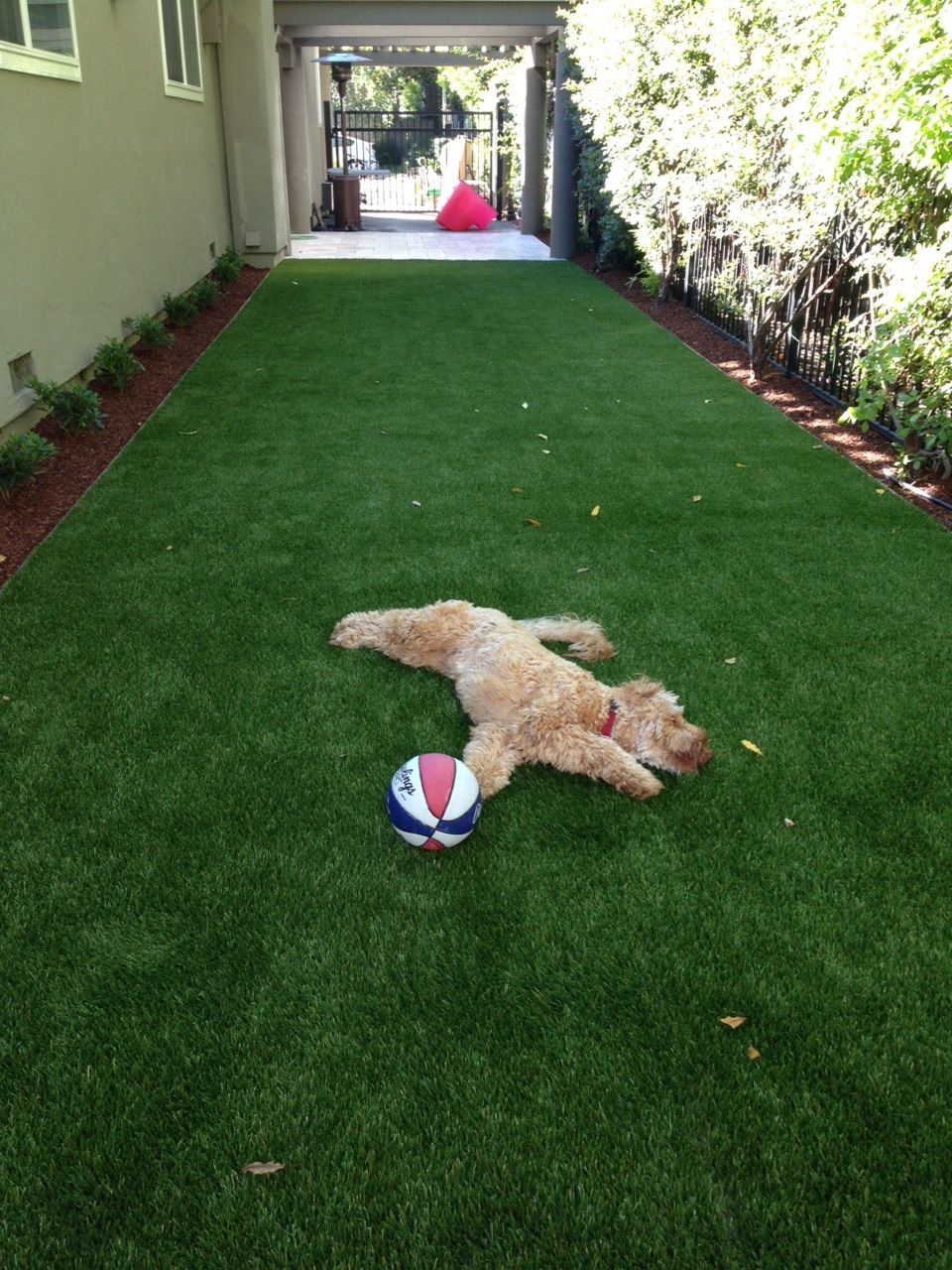 Innovative New Uses For Artificial Turf You've Never