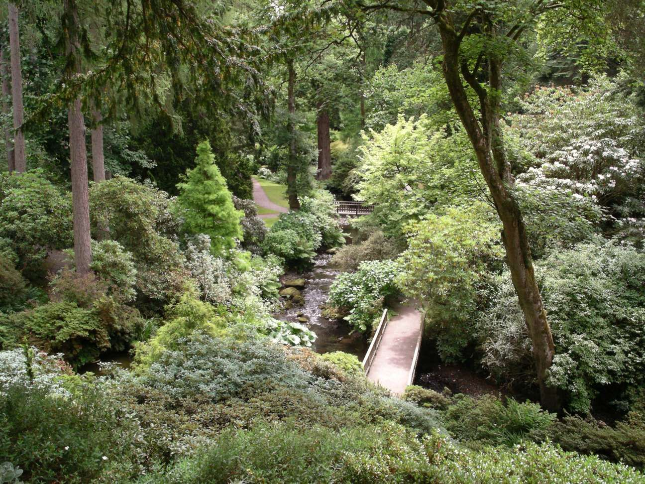 A Woodland Garden At Bodnant Garden, Near Conwy, Wales, UK. Photo Taken By  Wikipedia User Velela.