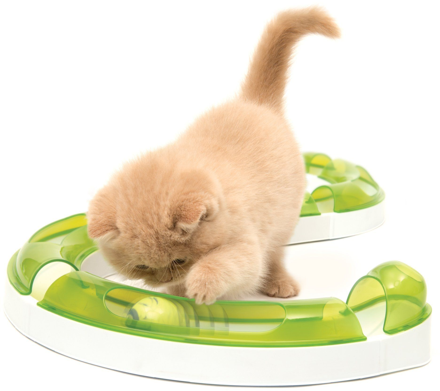 Catit Senses 2 0 Play Circuit In 2020 Cat Toys Interactive Cat Toys Cat Gifts