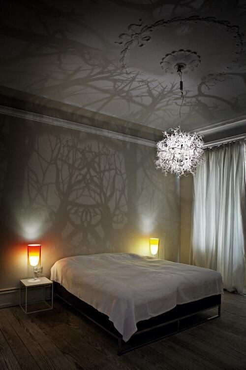 A chandelier that casts tree-like shadows on the wall. Definitely ...