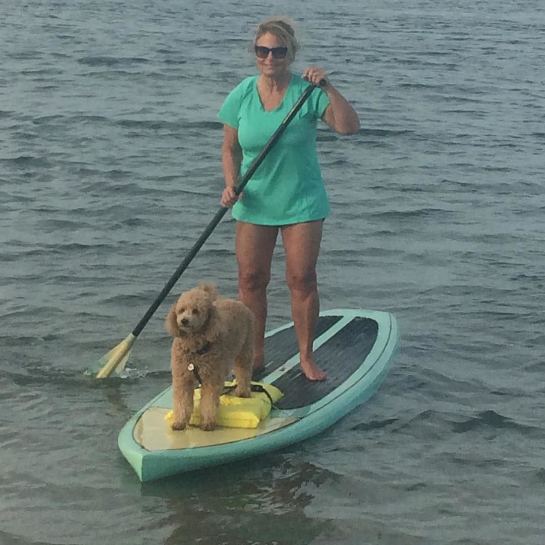 #sup#pup @wrightsvillesup by keepcalmwaxon