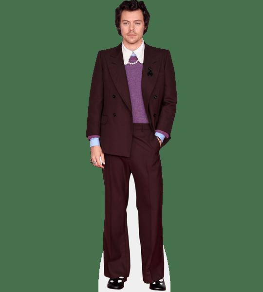 Harry Styles Burgundy Suit Cardboard Cutout Celebrity Cutouts Burgundy Suit Style Harry Styles