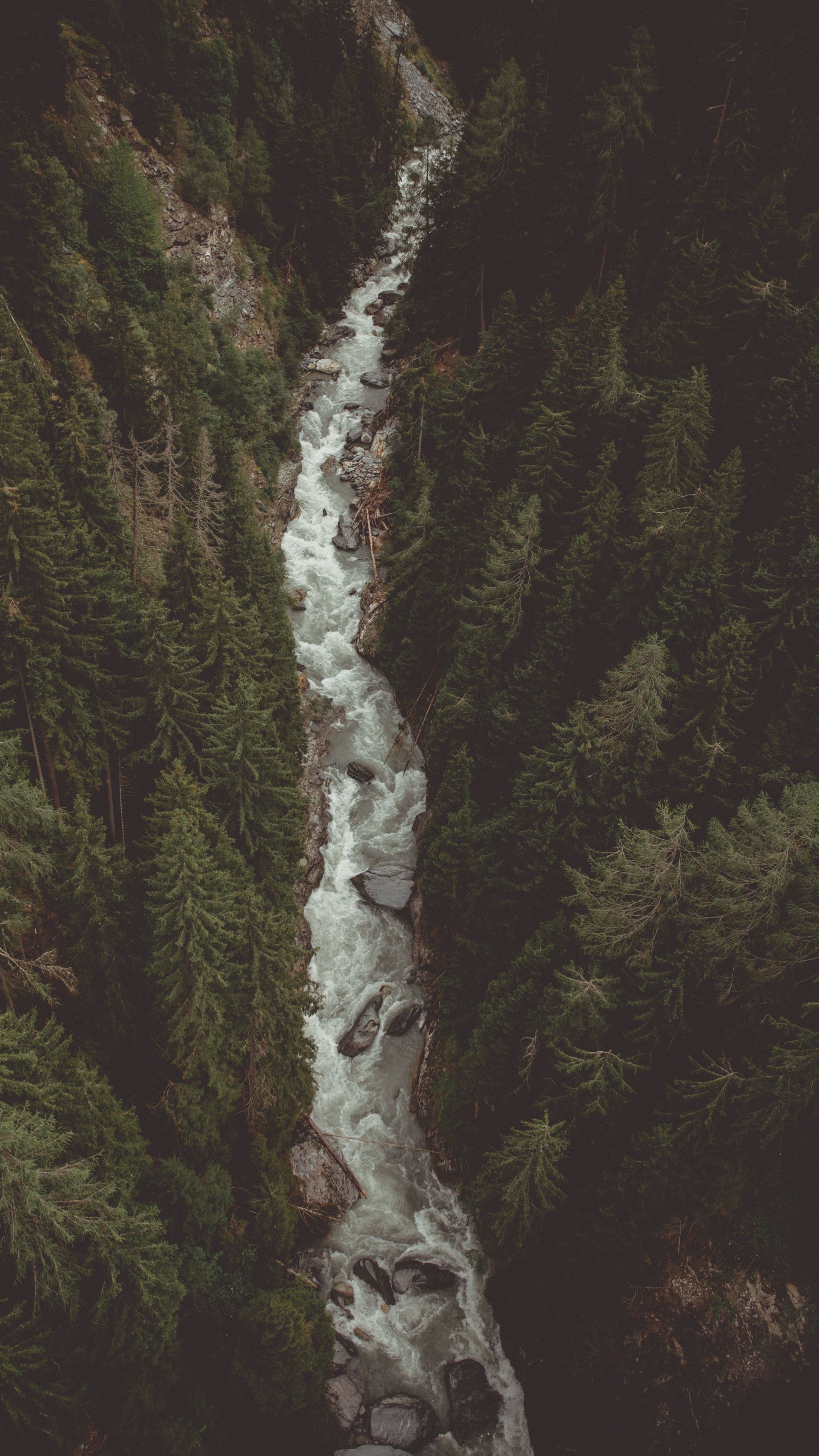 2160x3840 River, water stream, forest, aerial view