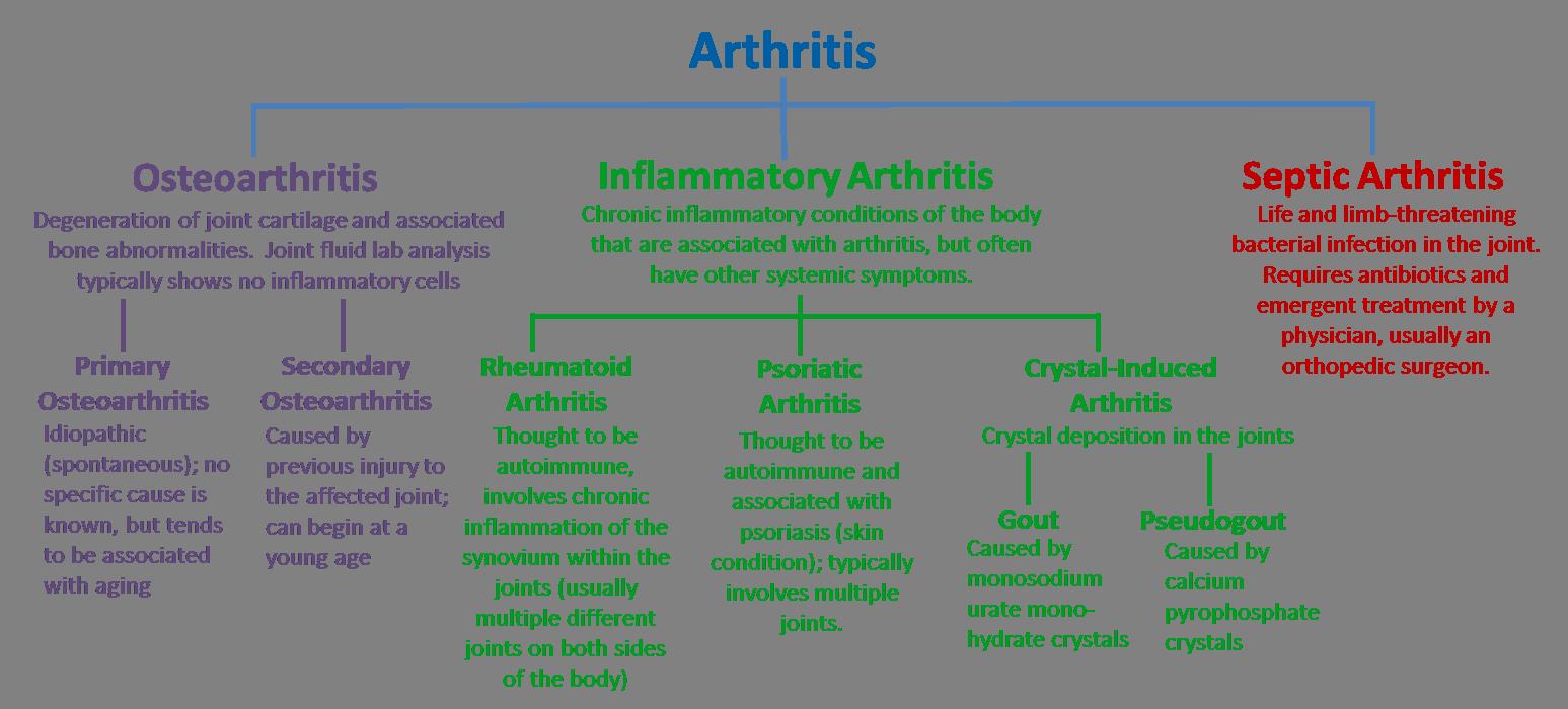 Arthritis - Lessons - Tes Teach