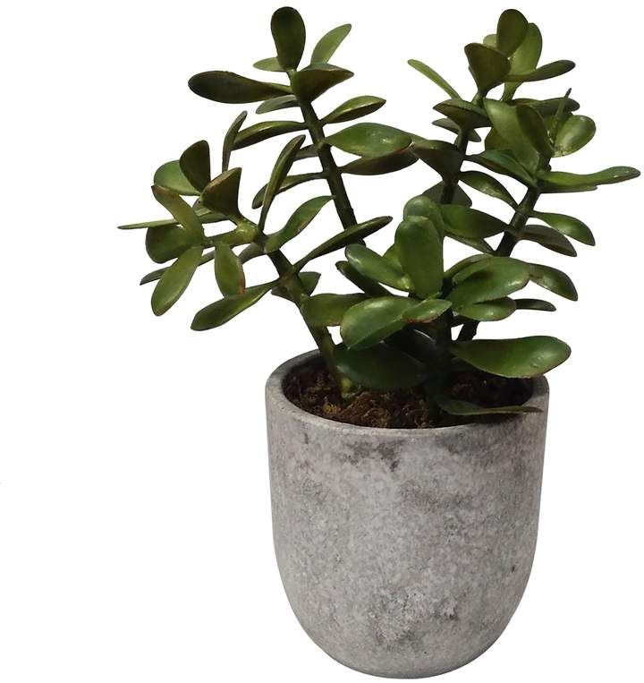 SONOMA Goods for Life® Artificial Potted Plant Table Decor -   13 table plants Png ideas