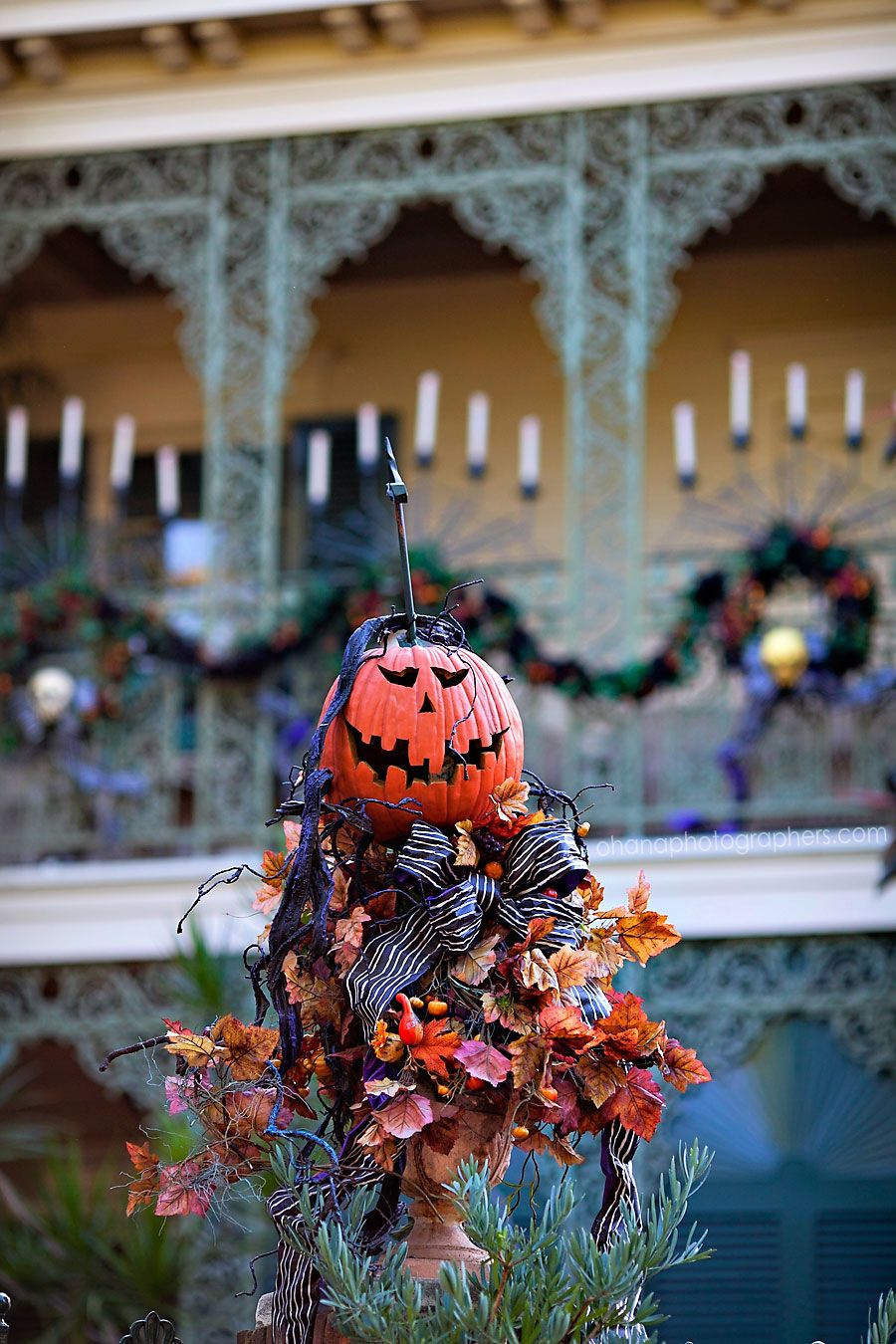 Disneyland // Haunted Mansion Holiday // Halloween at