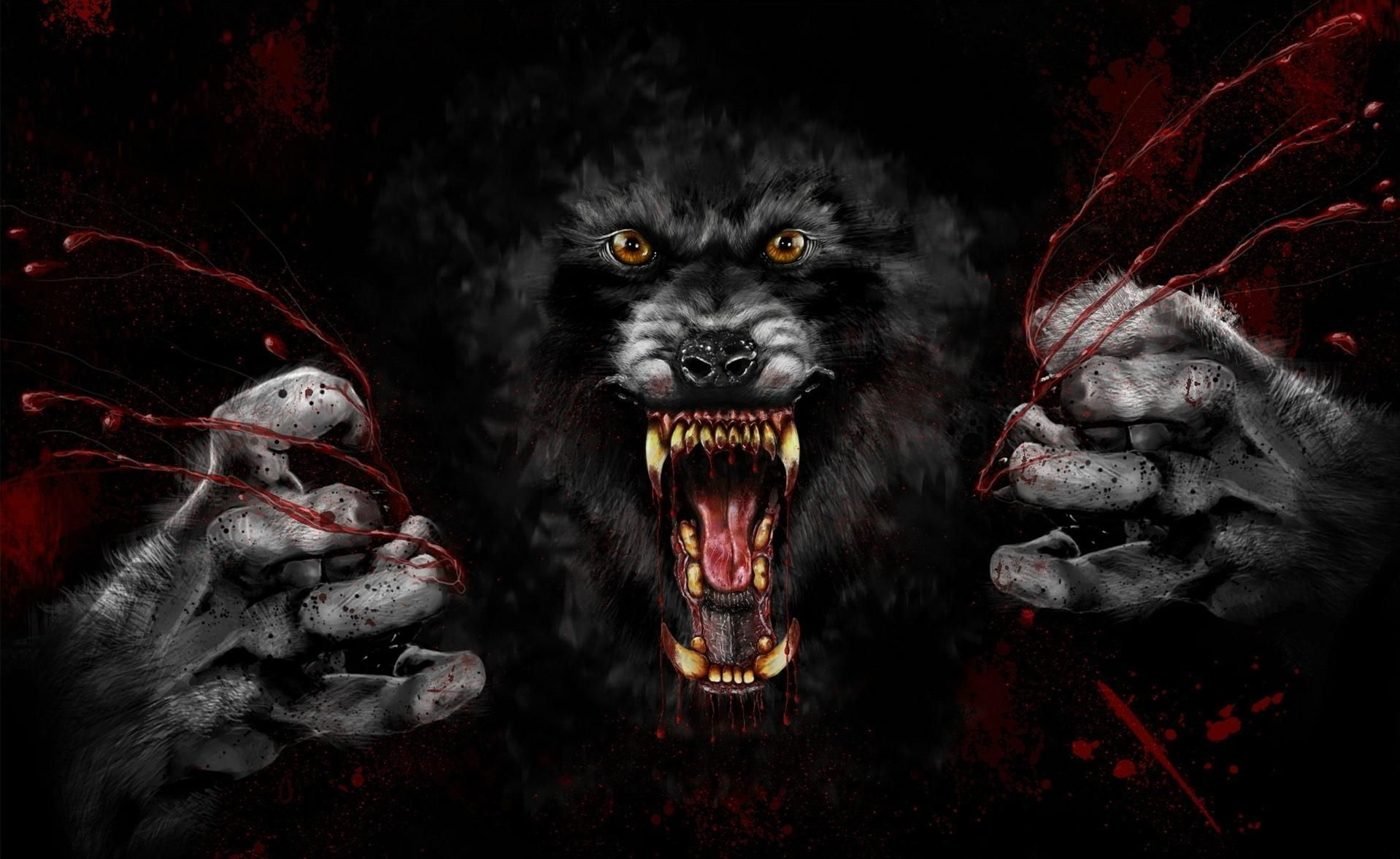 Scary Wolf Wallpaper - (34+ images ...