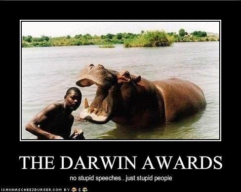 Hungry Hungry Hippo Wacky Pics Pinterest Darwin Awards - 22 people surely win darwin award