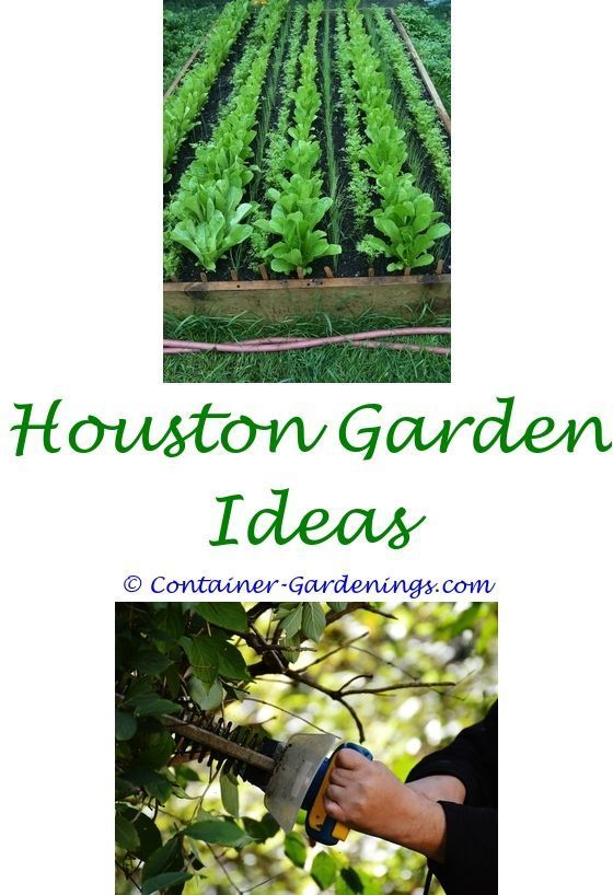 gardening in los angeles tips - silver garden stool ideas.fun garden ...