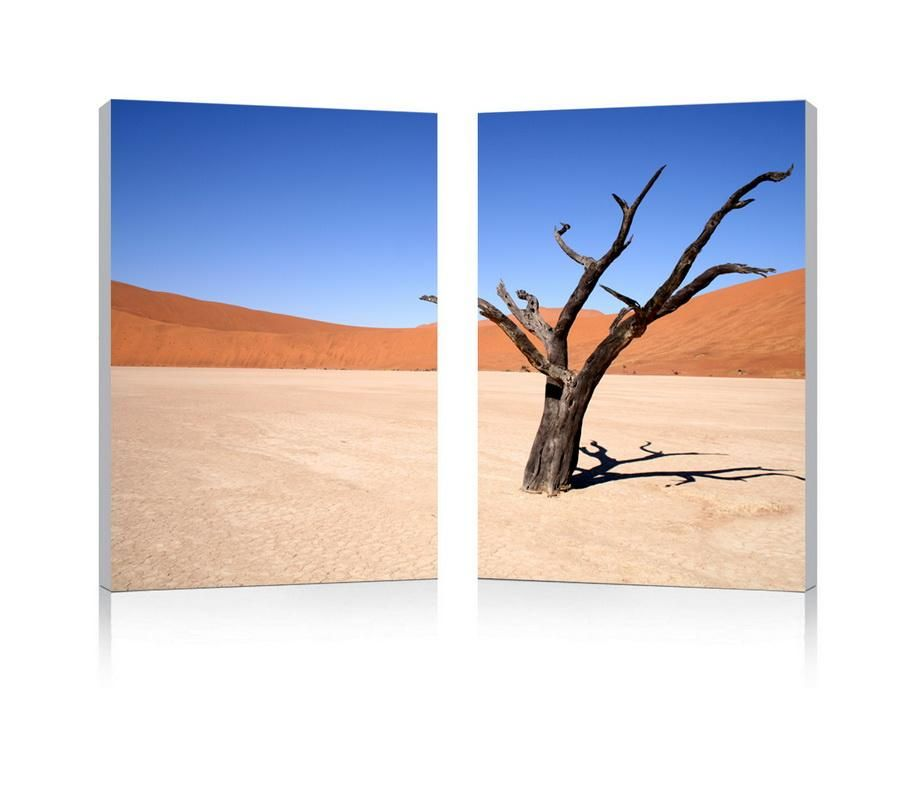 Desert Solitude Mounted Photography Print Diptych WL-2727-WI
