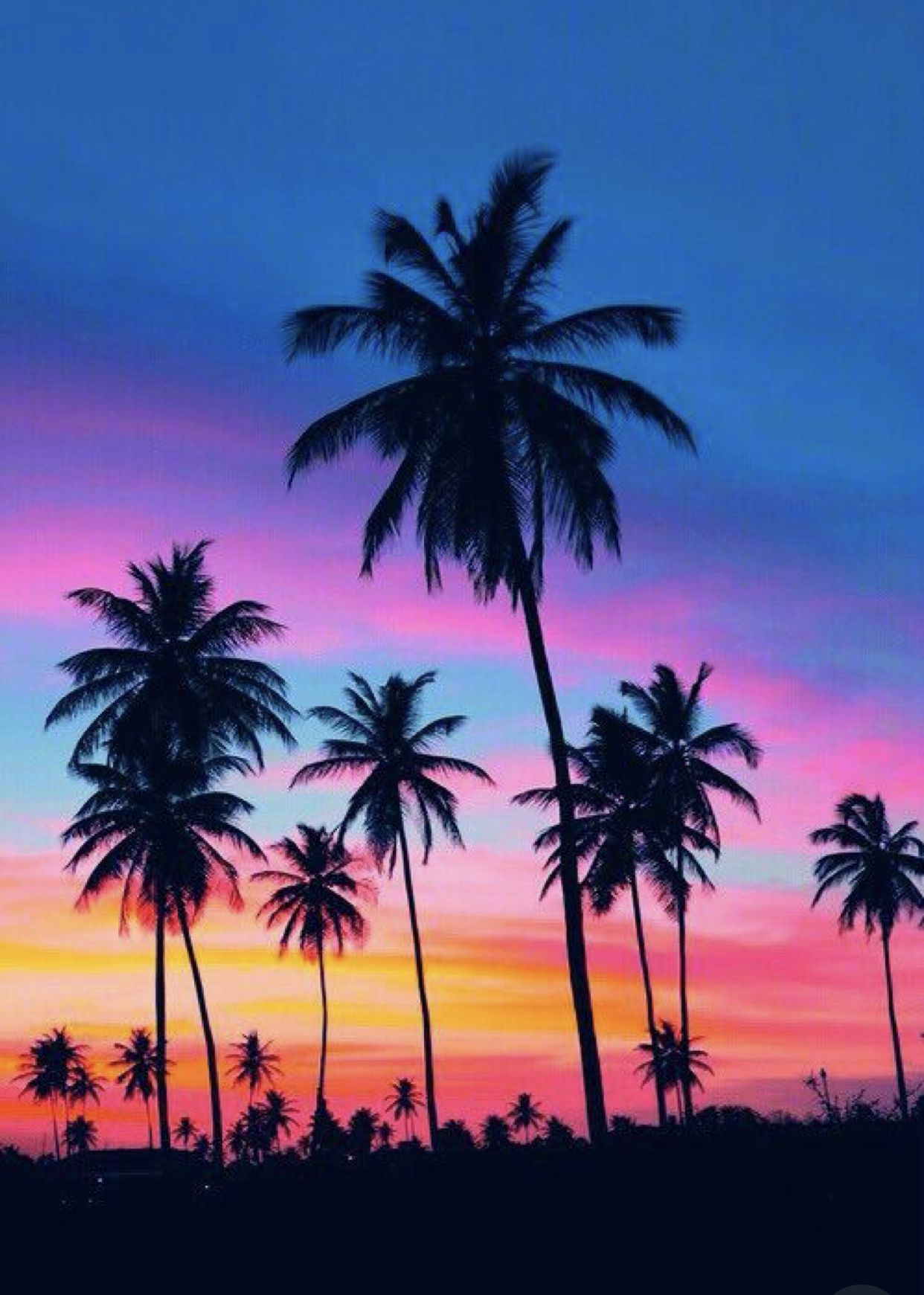 Cute Background Sunset Painting Sunset Iphone Wallpaper Palm Tree Sunset