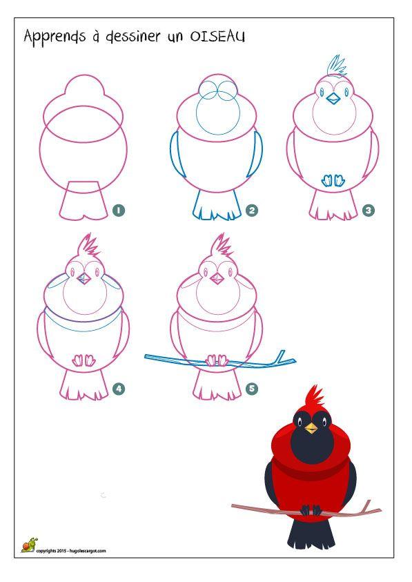 Apprendre dessiner un oiseau m thode pour dessiner un oiseau sur une branche apprendre - Dessiner un oiseau en maternelle ...