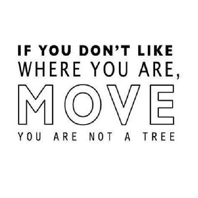 If You Dont Like Where You Are Move You Are Not A Tree Quote