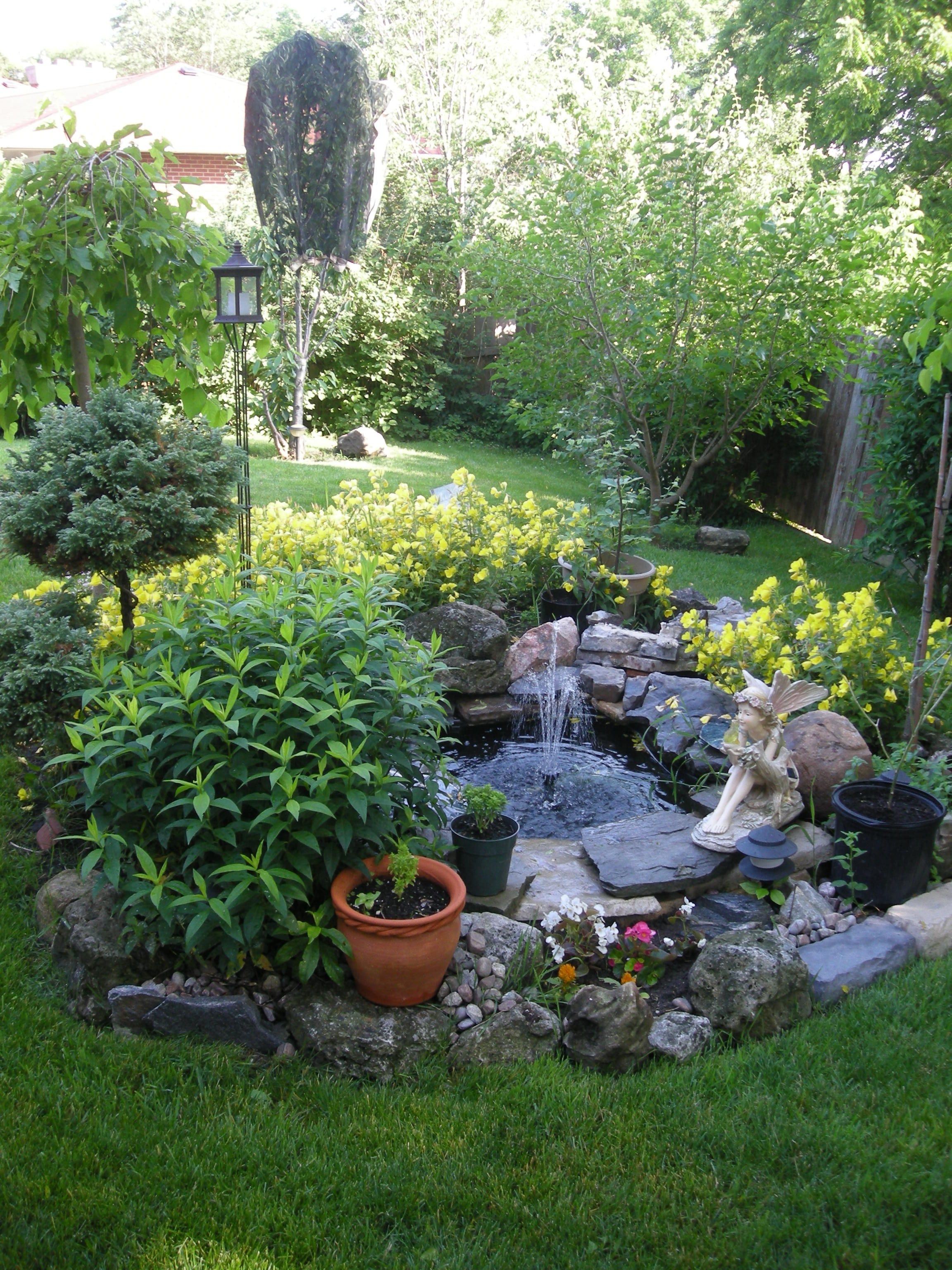 Small water garden but notice the greenery around it for Easy backyard pond