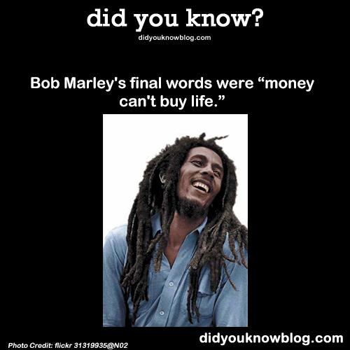 Bob Marley Bob Marley Quotes Bob Marley Funny Facts