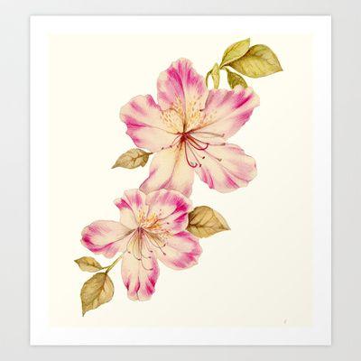 Azalea Watercolor Painting 2 Art Print By Artzlady 34 32 Flower Prints Art Flower Art Botanical Watercolor