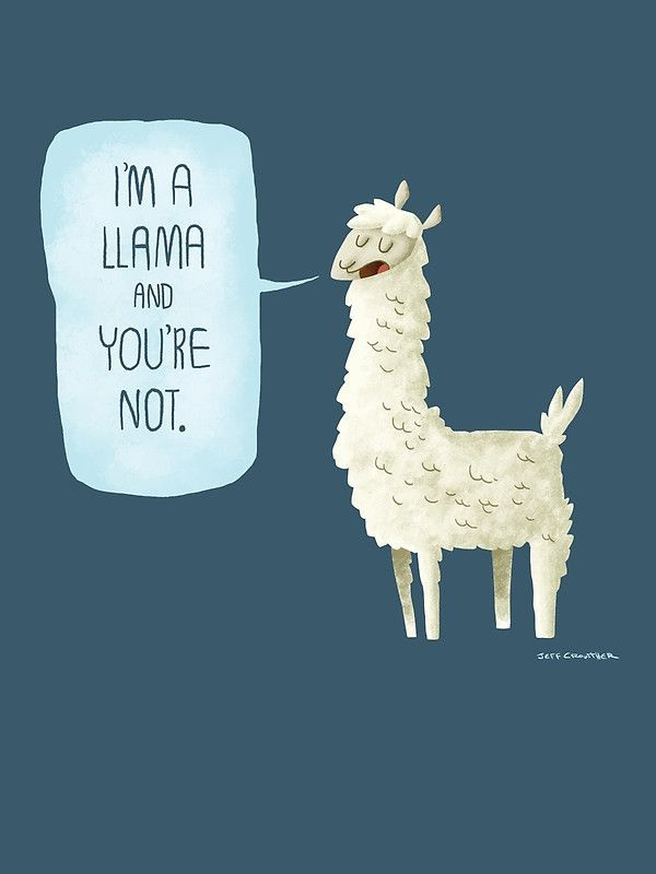 Ok sure you get to roam the mountains of South America, and you have soft fluffy wool that makes awesome blankets, but that doesn't mean you're better than us, llama.