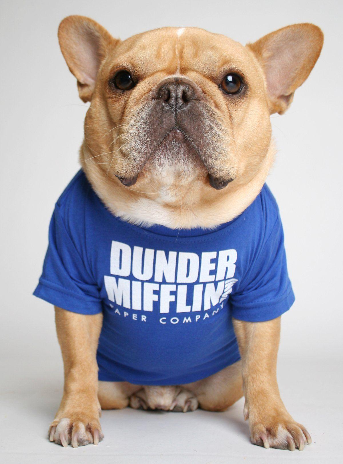 Dunder Mifflin Dog Tee Dog Shirt French Bulldog French Bulldog