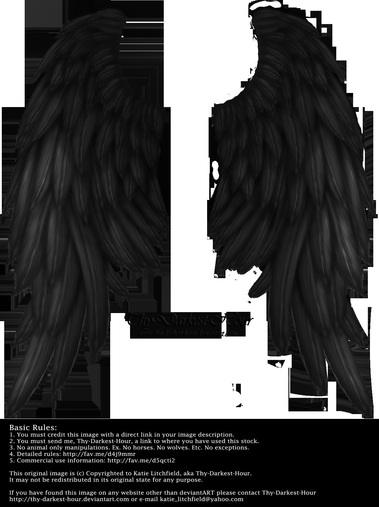 Daydream Wings Black By Thy Darkest Hour Wings