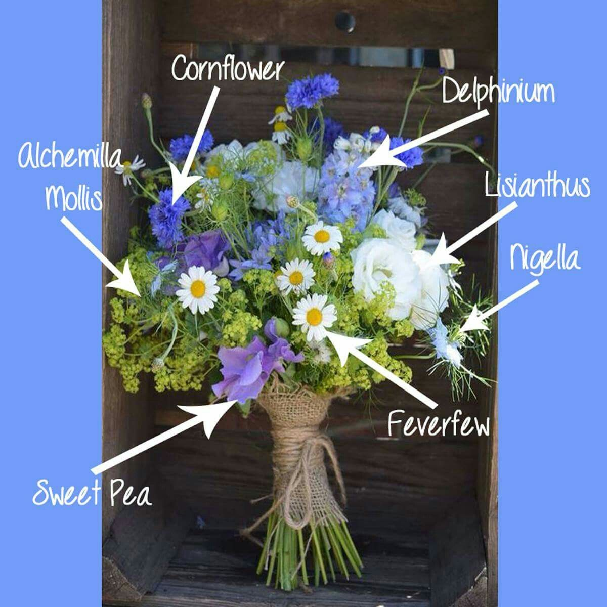 Pin by Gillian on Wedding ideas Wholesale flowers
