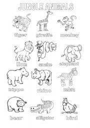 English Worksheet Jungle Animals Coloring Sheet