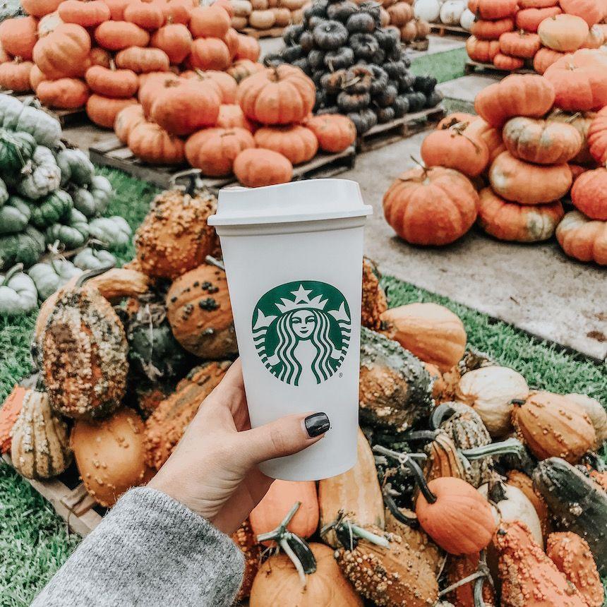 coffeetalk - Somewhere, Lately | Starbucks fall drinks, Starbucks fall,  Fall drinks