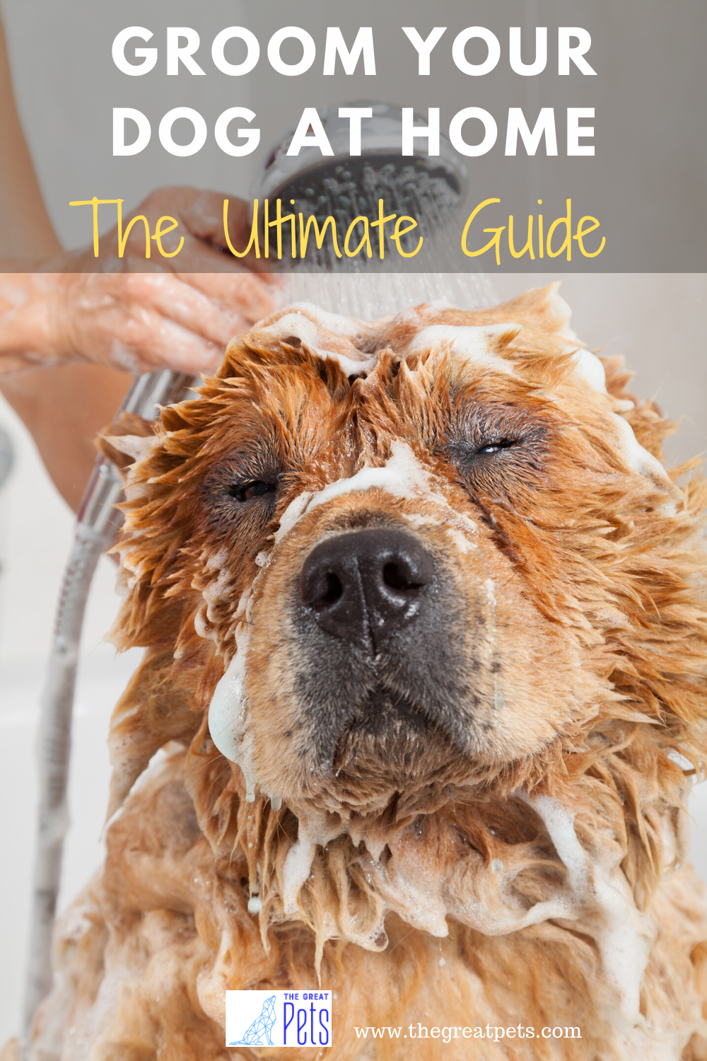 Pin On Dog Grooming Care