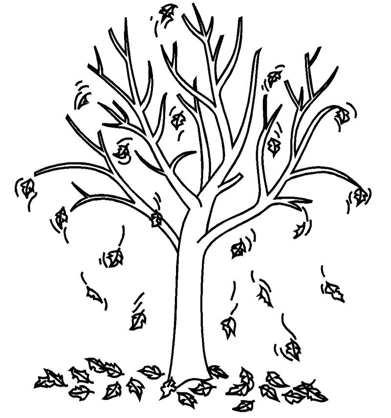Tree Coloring Pages Tree Fall Coloring Page Kids Coloring Art