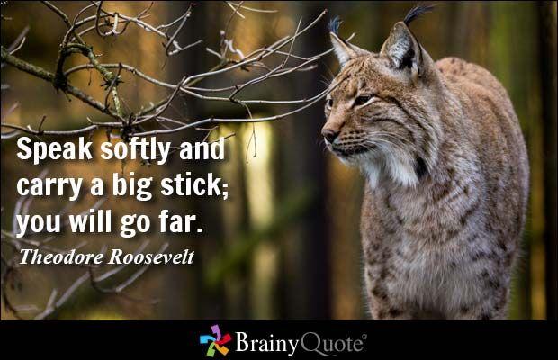 Speak softly and carry a big stick; you will go far. - Theodore Roosevelt #success #qotd