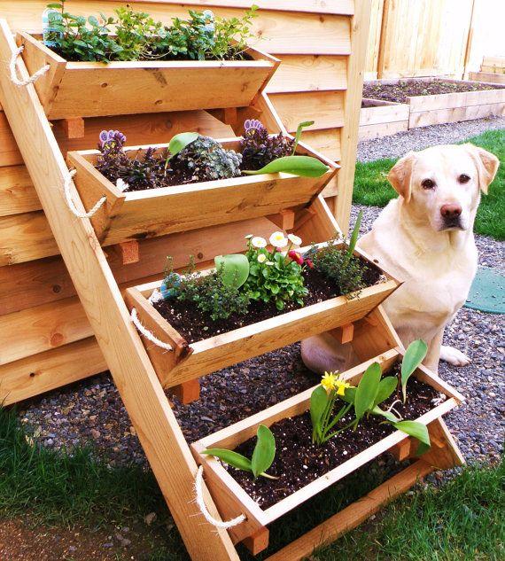 Les 25 Meilleures Id Es De La Cat Gorie Jardin De L Gumes