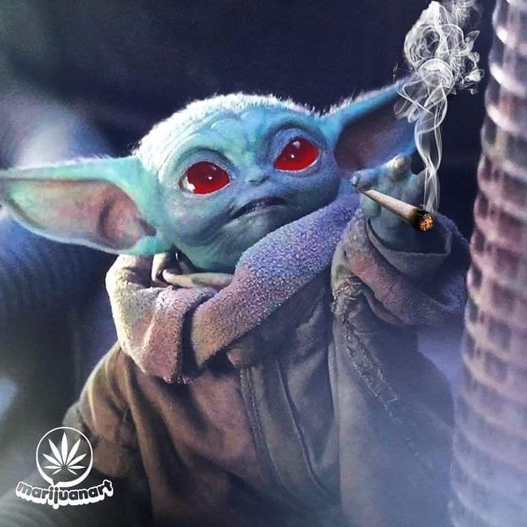 Baby Yoda Memes Yoda Images Star Wars Memes Yoda