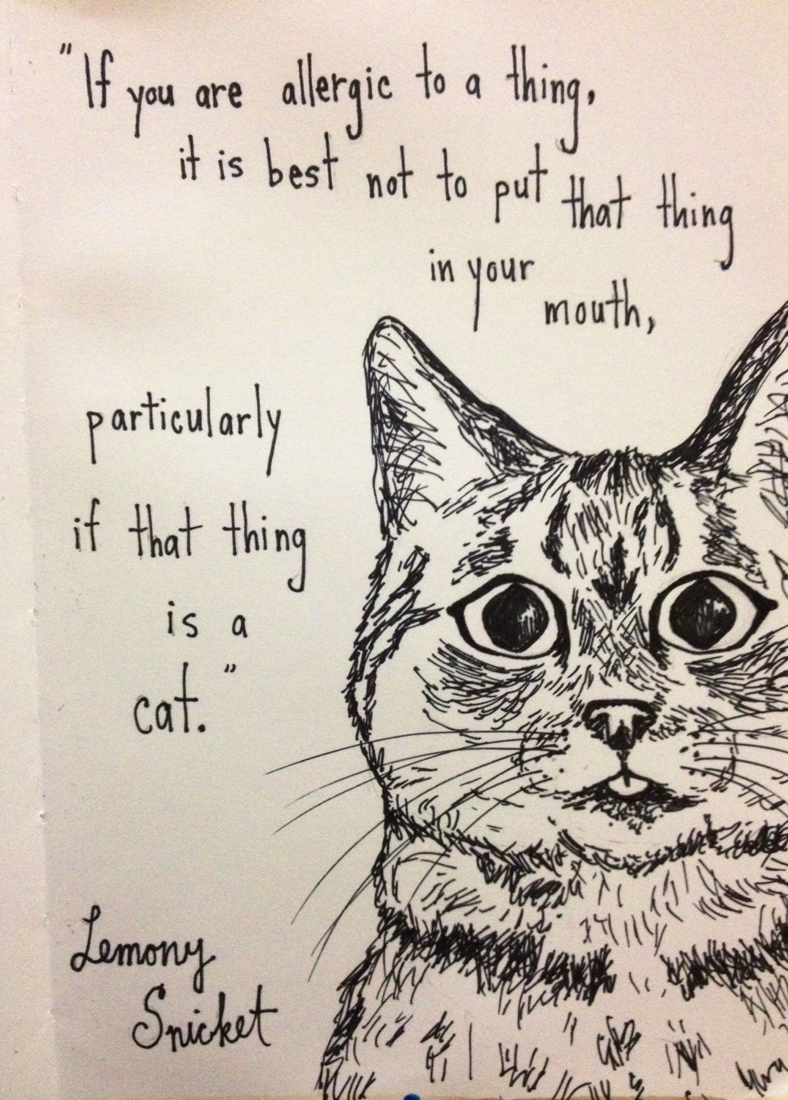 Lemony Snicket Cats Quote