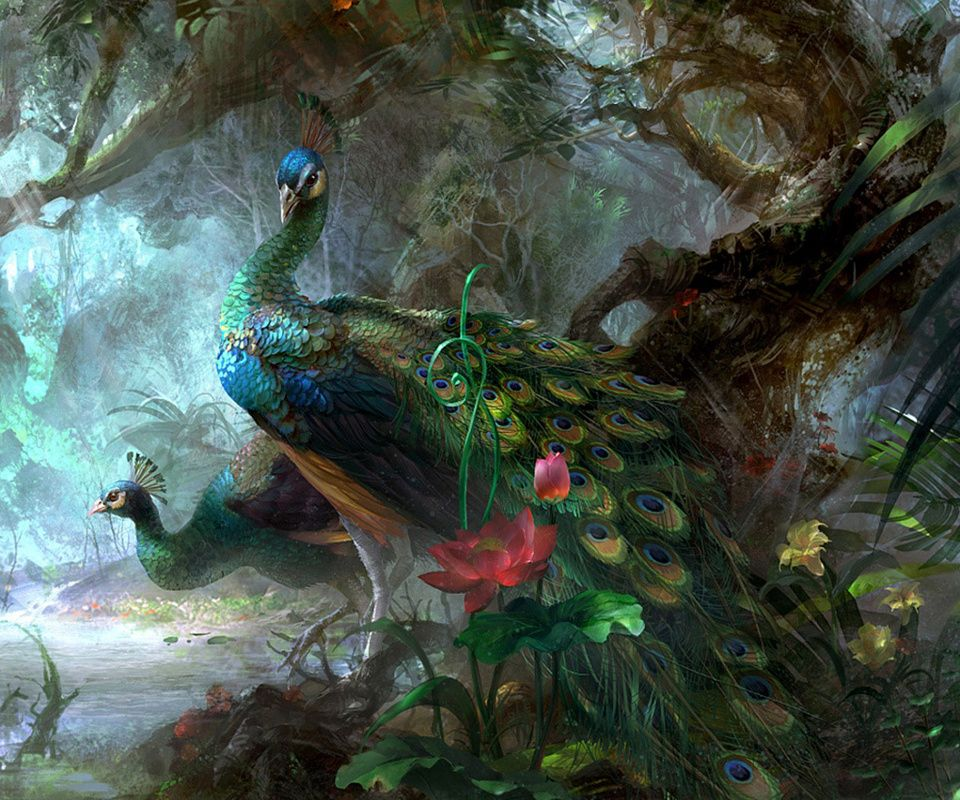 Peacocks Beautiful Boy Bird Peacock Art Bird Art Peacock Painting