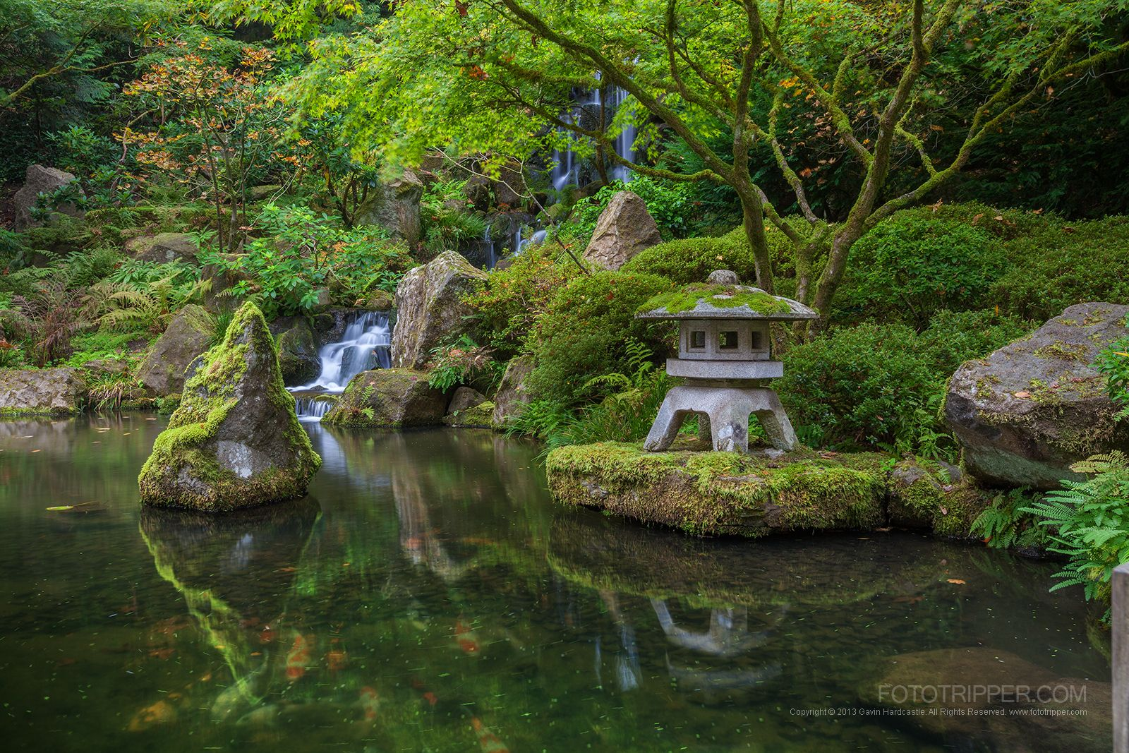 koi pond and waterfall at portland japanese garden httpwwwfototripper - Japanese Koi Garden