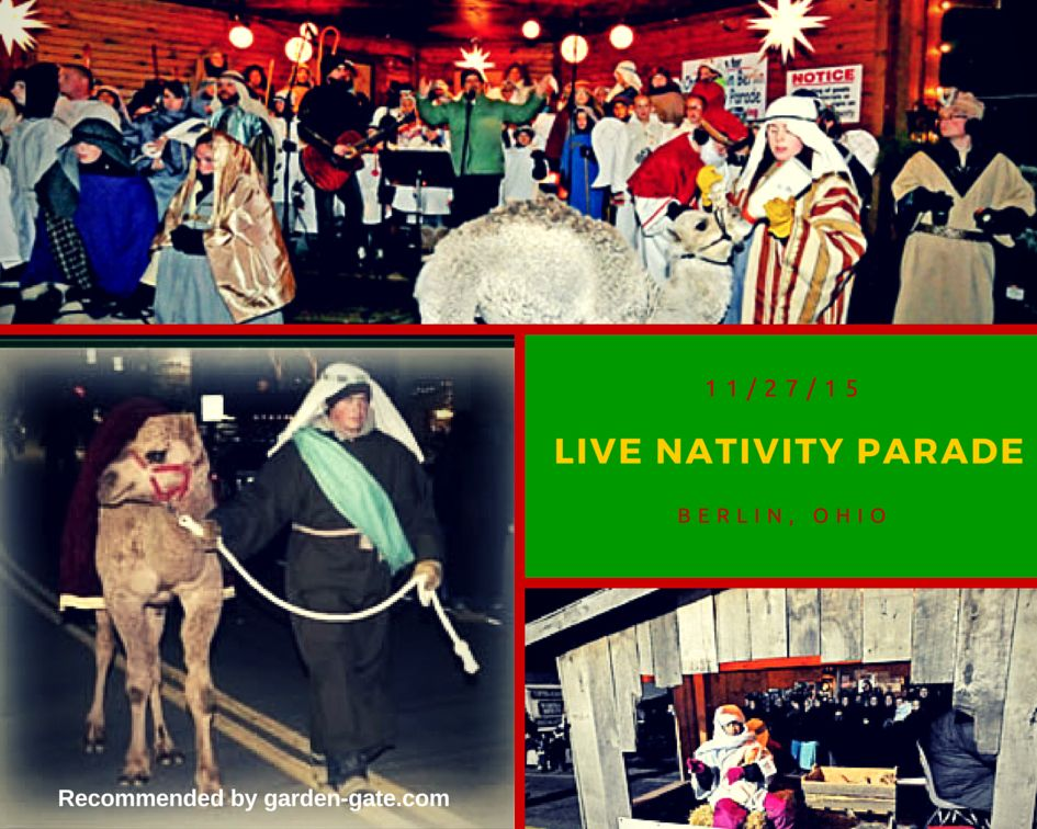 The Day After Thanksgiving Join The Live Nativity Parade In Berlin Ohio Amish Country Ohio Amish Country Holmes County