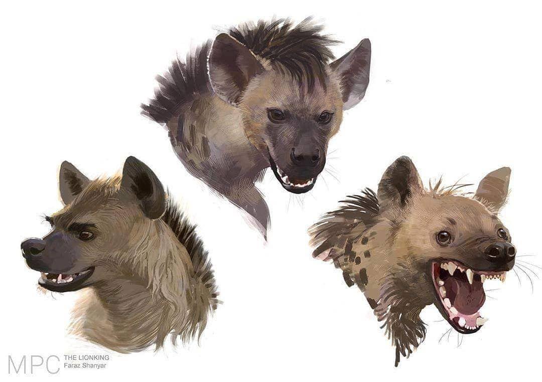 Shenzi Banzai And Ed Concept Art For The Lion King 2019 By Faraz Shanyar Conceptsketch Conceptart Co Lion King Art Lion King Drawings Hyena Lion King
