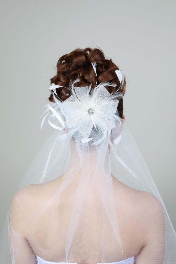 Klassische Brautfrisur Hochgesteckt Mit Schleier Schleier